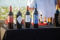 winefest-2015-43