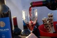 winefest-2015-48